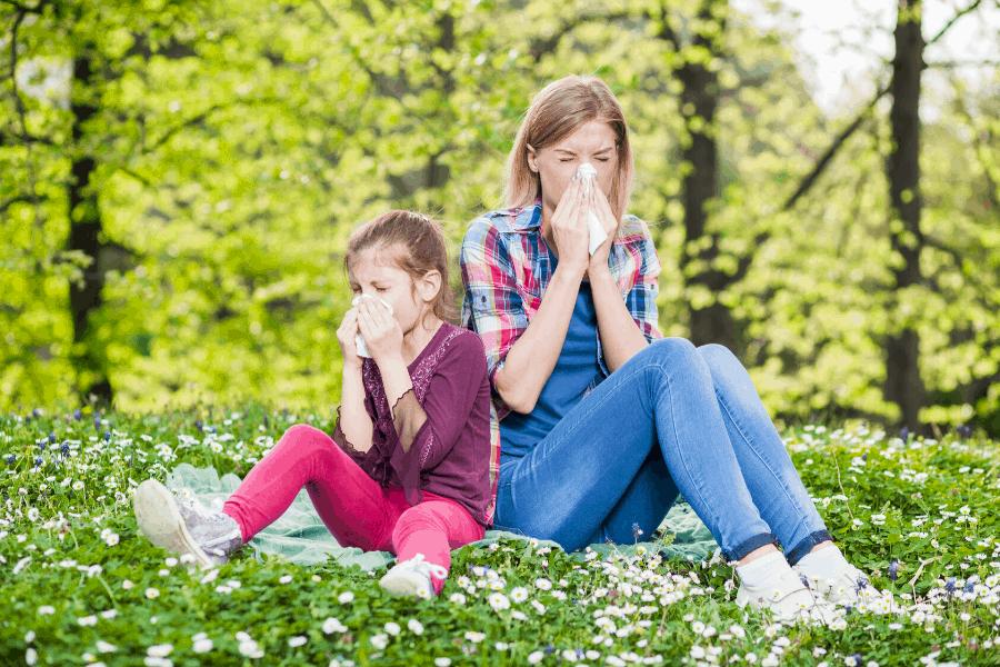 allergies vs. common cold